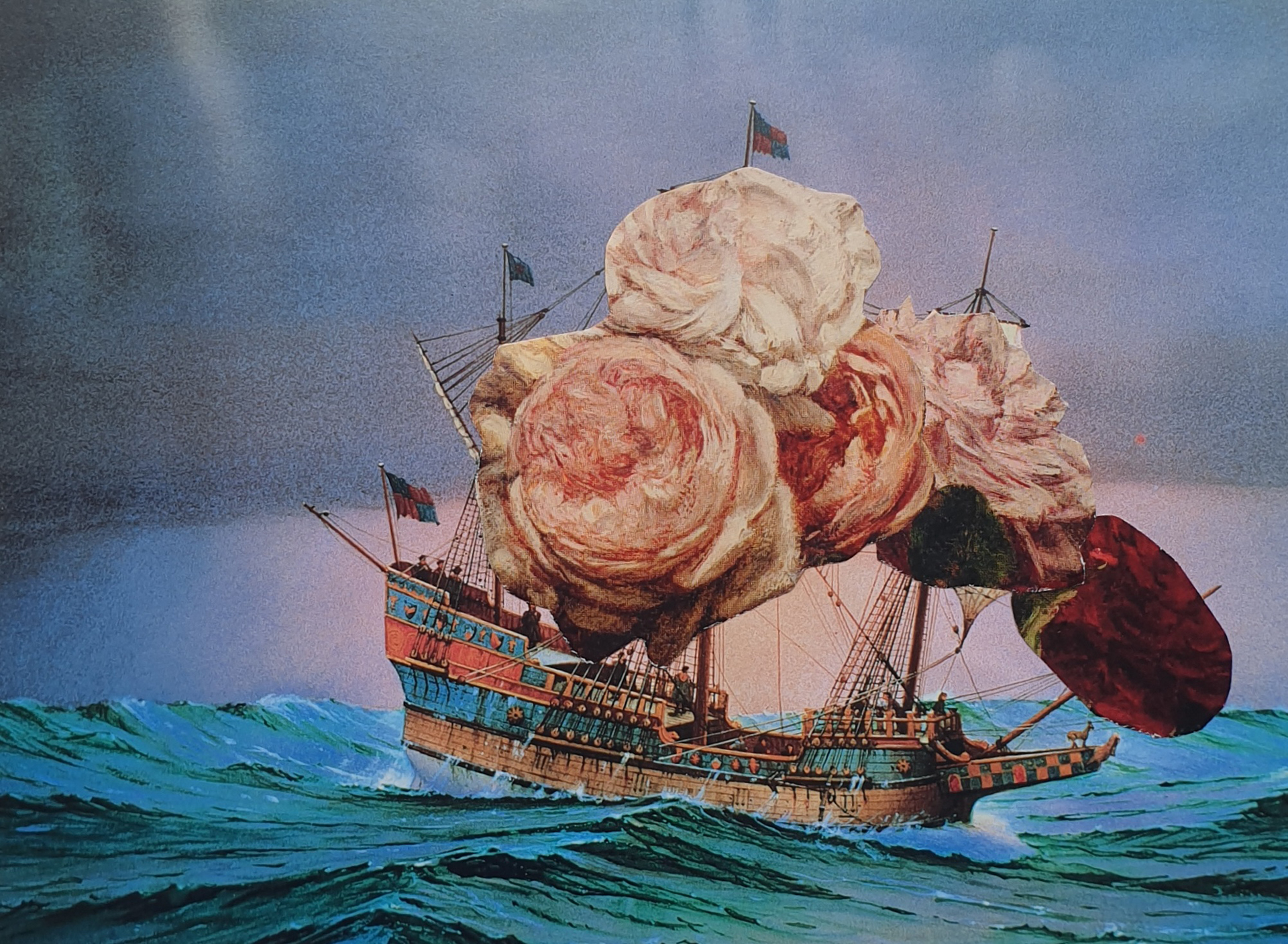 Ship of Fools and Roses