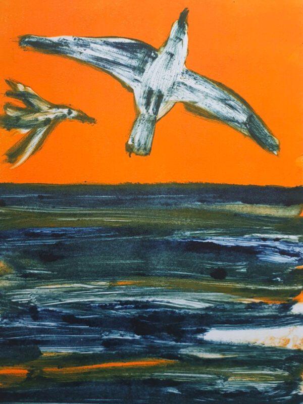 Seagulls in Lockdown