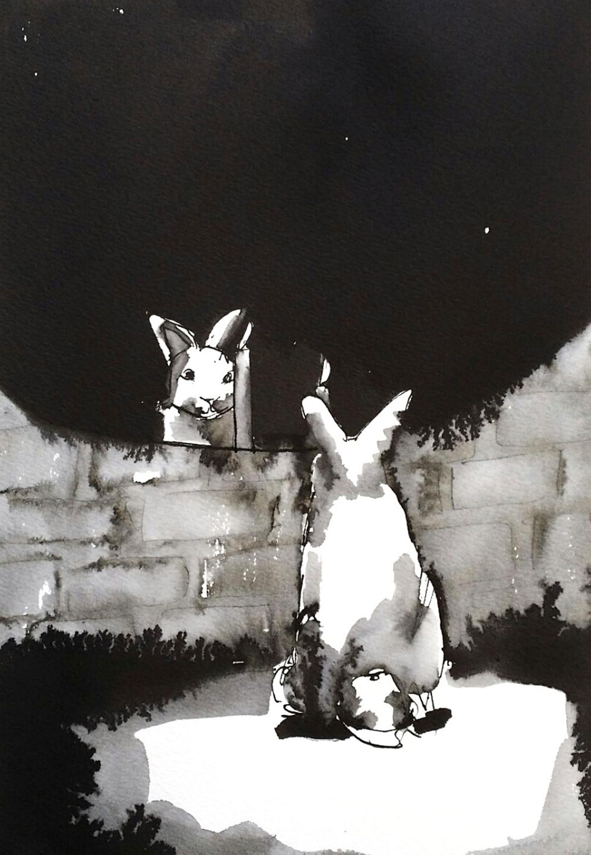 Vanity Rabbit